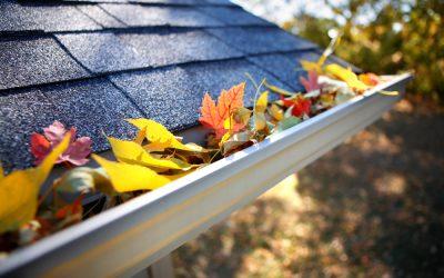 Die Blätter sind gefallen – so sorgen Sie für freie Rinnen und Rohre
