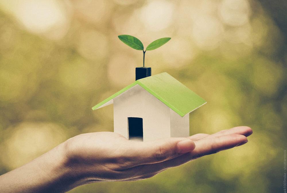 Umweltfreundlich bauen auch auf dem Dach