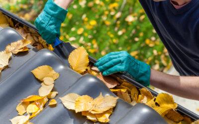 Dachrinnen – Die richtige Pflege und Reinigung (Teil 2)